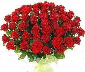 Букет из красных роз 51 шт.