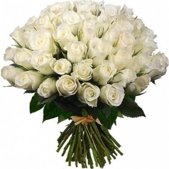 Букет из белых роз 51 шт. высота 50-60см.