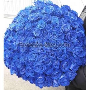 Букет синих роз 101 шт.