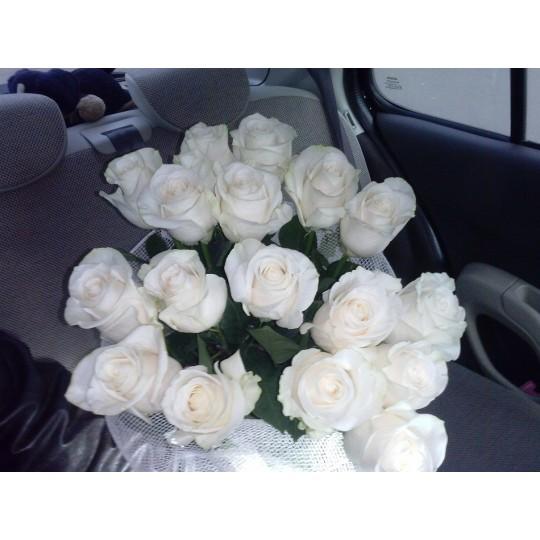 Букет из белых роз 17 шт. высота 50-60см.