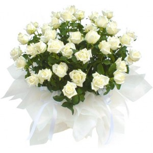 Букет из белых роз 25 шт. высота 50-60см.