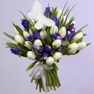 """Букет из 25-ти белых тюльпанов и 10-ти синих ирисов """" Очарование"""""""